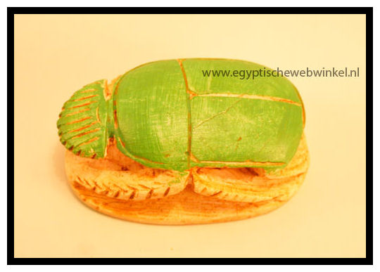 Big green-beige scarab